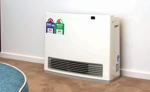 Rinnai gas heater how often do they need to be serviced?